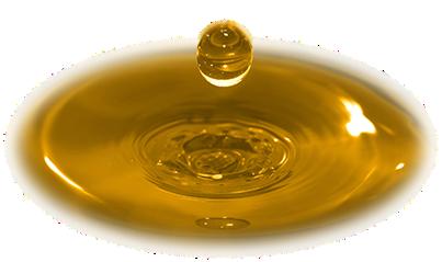 soybean_oil_drop[1]